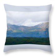Earthly Curves Throw Pillow