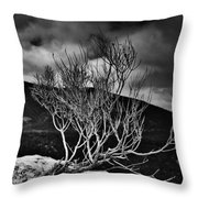 Ease Of The Prickle Throw Pillow