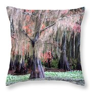 East Texas Throw Pillow