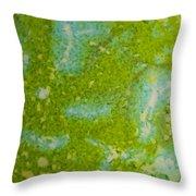 Easter Egg Green Macro 1 Throw Pillow