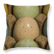 Easter Eggs Carton 1 A Throw Pillow