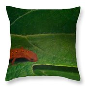 Easterm Newt Nnotophthalmus Viridescens 17 Throw Pillow