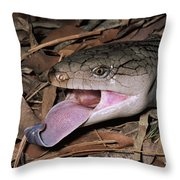 Eastern Blue-tongue Skink Threat Display Throw Pillow