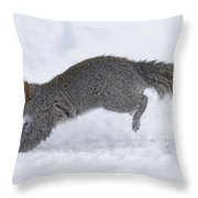Eastern Gray Squirrel Running Throw Pillow