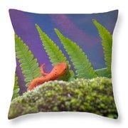 Eastern Newt 1 Throw Pillow
