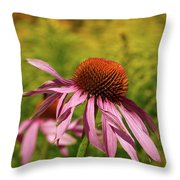 Eastern Purple Coneflower Throw Pillow