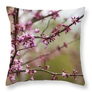 Eastern Redbud Asian Style Throw Pillow