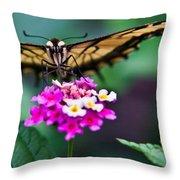 Eastern Tiger Swallowtail 7 Throw Pillow