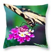 Eastern Tiger Swallowtail 9 Throw Pillow