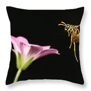 Eastern Yellow Jacket Wasp In Flight Throw Pillow