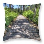 Easy Path Throw Pillow