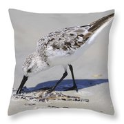 Eating At The Shore Throw Pillow