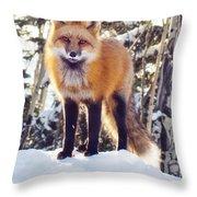 Eating Snow Throw Pillow