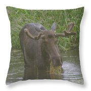 Eating With His Mouth Full Throw Pillow