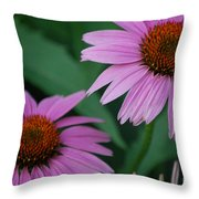 Echinacea Cone Flowers Throw Pillow