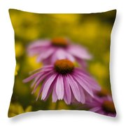 Echinacea Dreamy Throw Pillow