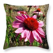 Echinacea In Water Throw Pillow