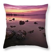 Edge Of A New Day Throw Pillow