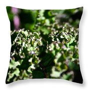 Edge Of Kale Throw Pillow