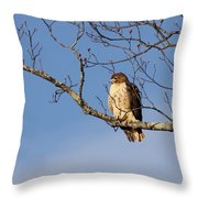 Edge Of The Field Throw Pillow