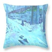 Eel Bay Trail Throw Pillow