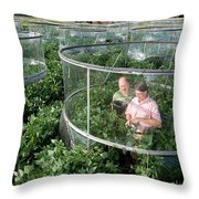 Effects Of Co2 On Soy Throw Pillow