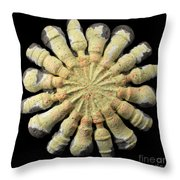 Efficiency Throw Pillow by Adam Long