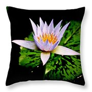 Egg Lily Throw Pillow