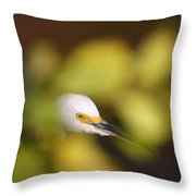 Egret Abstract Throw Pillow