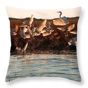 Egret And Ibis Party Throw Pillow