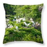 Egret Estuary Throw Pillow