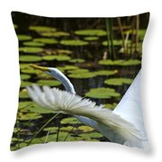 Egret Take Off Throw Pillow