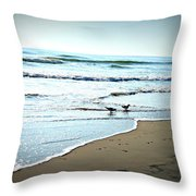 Egrets I Have A Few Throw Pillow