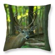 Eight Point_9531_4366 Throw Pillow