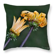 Elegant Daisies Throw Pillow