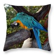 Elegant Parrot Throw Pillow