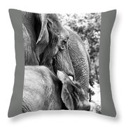 Elephant Ears Throw Pillow