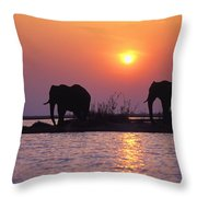 Elephant Silhouettes Throw Pillow