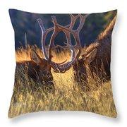 Elk 2 Elk Throw Pillow
