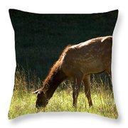 Elk Calf Throw Pillow
