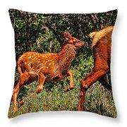 Elk Fawn Throw Pillow