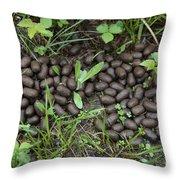 Elk Scat Throw Pillow