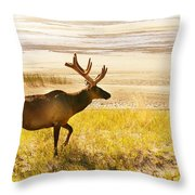 Elk Wanders On Yellow Landscape Throw Pillow