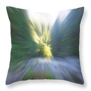 Elkhorn Abstract 2 Throw Pillow