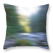 Elkhorn Abstract Throw Pillow