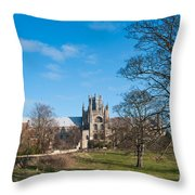 Ely Scenic Throw Pillow
