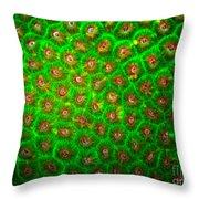 Emerald Coral Throw Pillow