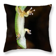 Emerald Gecko Throw Pillow