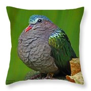 Emerald Ground Dove Throw Pillow