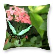 Emerald Swallowtail Throw Pillow